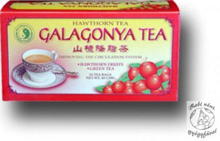 Dr. Chen galagonya tea, filteres (20db-os)