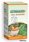 Astragalus/Csüdfű, Baktövis/ + EGCG, Rezveratrol kapszula 100db