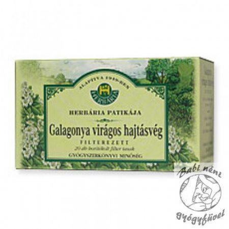 Herbária filteres Galagonya (20db-os)