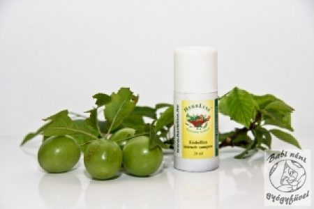 Herbline Embellica sampon mini